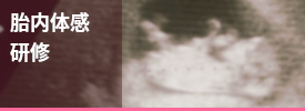 胎内体感研修